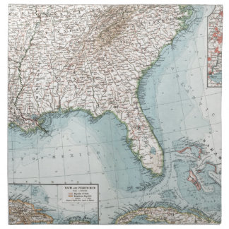 Vintage mapa del sudeste de los E.E.U.U. y del Servilletas Imprimidas