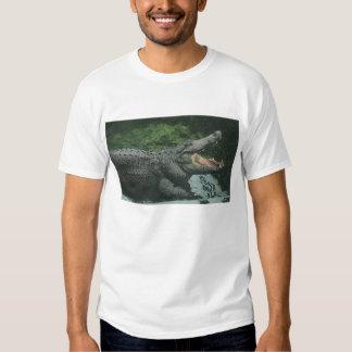 Vintage Marine Animal Life Reptiles, Crocodile Tee Shirts