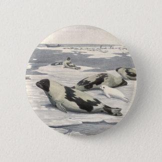 Vintage Marine Animals, Harp Seals in Arctic Snow Button