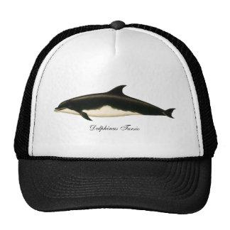 Vintage Marine Animals, Mammals, Dolphins Hats