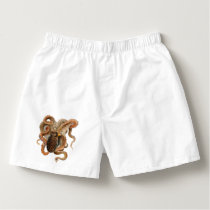 Vintage Marine Animals, Octopus Vulgaris Boxers