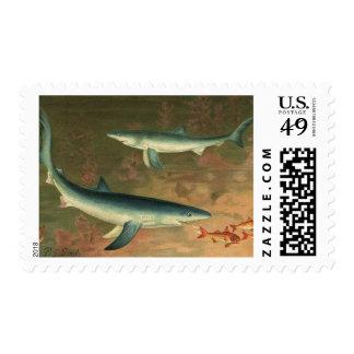 Vintage Marine Aquatic Life Blue Shark Eating Fish Postage