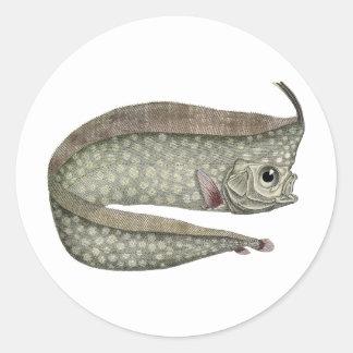 Vintage Marine Aquatic Life, Crested Oarfish, Fish Classic Round Sticker