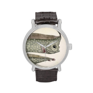 Vintage Marine Aquatic Life, Crested Oarfish, Fish Wrist Watch
