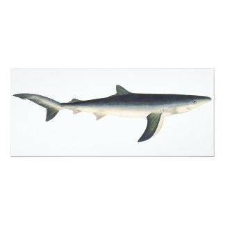 Vintage Marine Aquatic Ocean Life, Blue Shark Card
