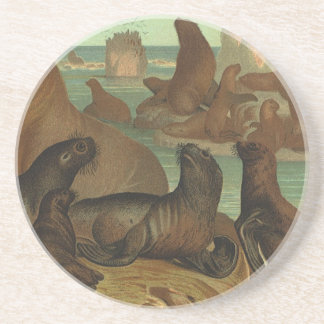 Vintage Marine Life Animal, Sea Lions on the Beach Coaster