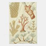 Vintage Marine Life Animals Coral Textbook Biology Hand Towel
