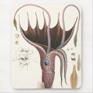 Vintage Marine Life Animals, Umbrella Squid Mouse Pad