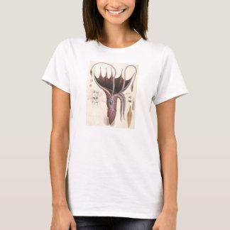 Vintage Marine Life Animals, Umbrella Squid T-Shirt