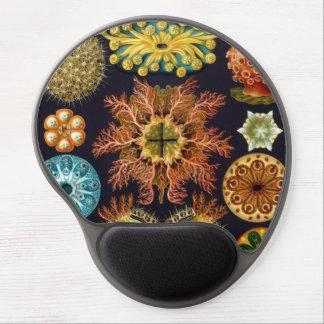 Vintage Marine Life, Ascidiae by Ernst Haeckel Gel Mouse Pad