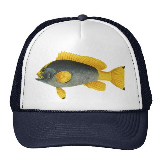 Vintage Marine Life Fish, Blue and Yellow Grouper Trucker Hats