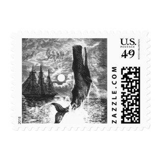 Vintage Marine Life Mammal, Sperm Whale Breaching Stamp