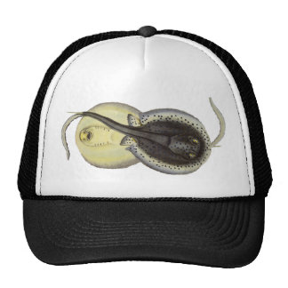 Vintage Marine Life Ocean Animal Spotted Sting Ray Trucker Hat