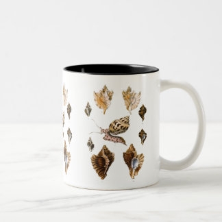 Vintage Marine Life Organisms, Snails and Mollusks Two-Tone Coffee Mug