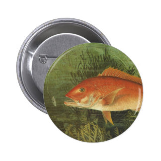 Vintage Marine Life, Red Snapper Fish in the Ocean Button