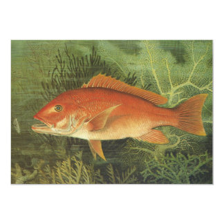 Vintage Marine Life, Red Snapper Fish in the Ocean Card
