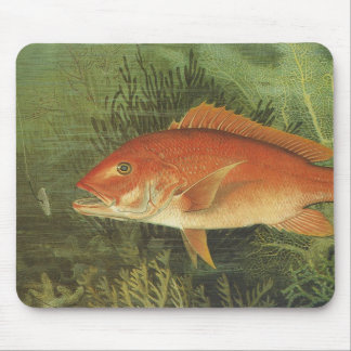 Vintage Marine Life, Red Snapper Fish in the Ocean Mouse Pad