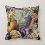 Vintage Marine Life, Sea Anemones by Ernst Haeckel Pillows