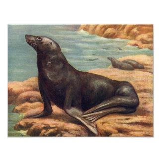 Vintage Marine Mammal Sea Lion by the Seashore 4.25x5.5 Paper Invitation Card