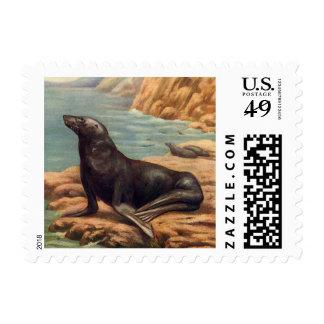 Vintage Marine Mammals, Sea Lion by the Seashore Postage