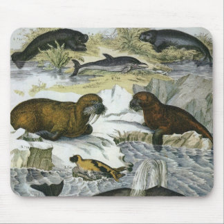 Vintage Marine Mammals; Whales, Walruses and Seals Mouse Pad