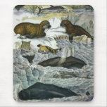 Vintage Marine Mammals; Whales, Walruses and Seals Mouse Pads