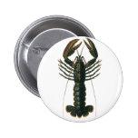Vintage Marine Ocean Life Crustacean, Lobster 2 Inch Round Button