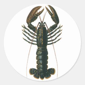 Vintage Marine Ocean Life Crustacean, Lobster Stickers