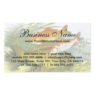Vintage Marine Sea Life, Aquatic Fish Goldfish Koi Business Card Template