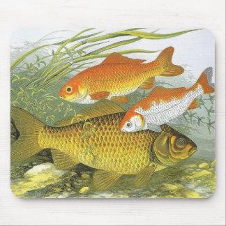 Vintage Marine Sea Life Fish, Aquatic Goldfish Koi Mouse Pad