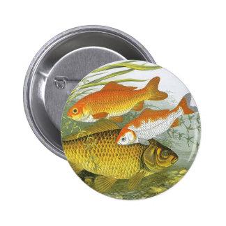 Vintage Marine Sea Life Fish, Aquatic Goldfish Koi Pinback Button