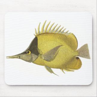 Vintage Marine Tropical Chelmon Longirostris Fish Mouse Pad