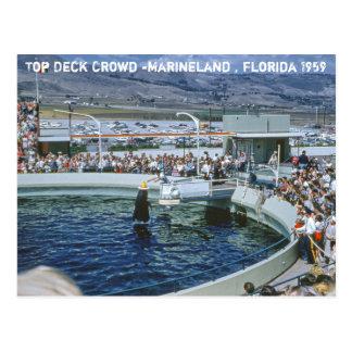 Vintage Marineland Florida Postcard