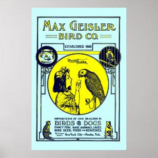 Vintage Max Geisler Bird Co. Art Print (1931)