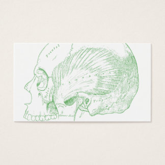 Vintage Medical Drawing Human Temporal Muscle Business Card