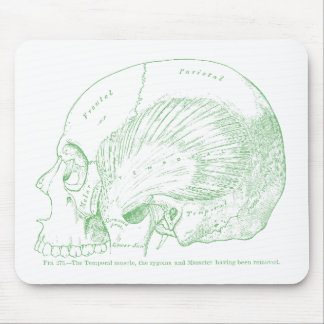 Vintage Medical Drawing Human Temporal Muscle Mouse Pad