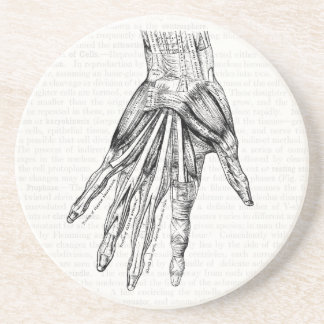 Vintage Medical Drawing Muscles of the Hand Coaster