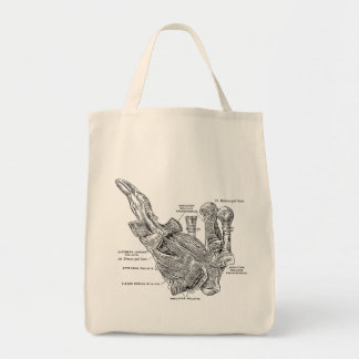 Vintage Medical Illustration Muscles of the Thumb Tote Bag
