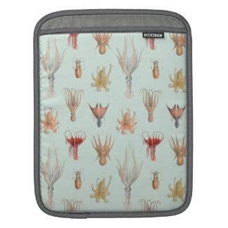 Vintage Mollusks (Blue) iPad Sleeves