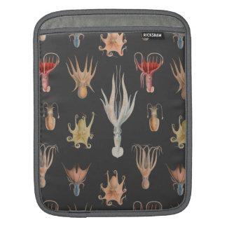 Vintage Mollusks iPad Sleeve