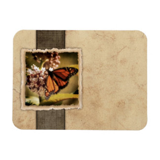 Vintage Monarch Butterfly Magnets