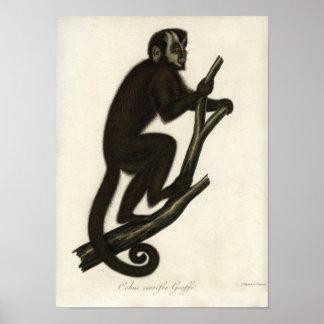 Vintage Monkey Posters