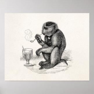 Vintage Monkey Smoking a Pipe Monkeys  Animal Poster