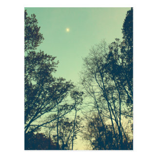 Vintage Moonlit night Postcard