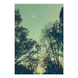Vintage Moonlit night Poster