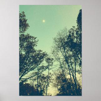 Vintage Moonlit night Poster