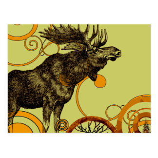 Vintage Moose Postcard