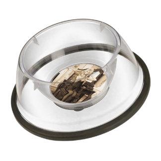 Vintage Morning Pet Bowl