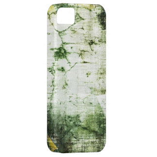Vintage moss crack wall background graphic design iPhone SE/5/5s case
