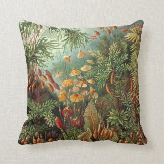 Vintage Moss Plants by Ernst Haeckel, Muscinae Pillow